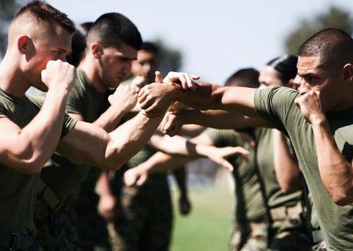 Academia De Artes Marciales Mixtas Y Defensa Personal Comando Tiburon Talara Piura