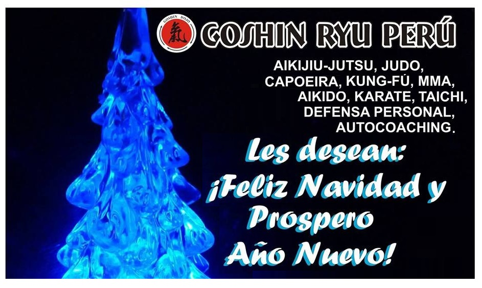 Fotos de Goshin Ryu Perú - Artes Marciales